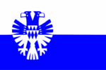 Arnhemse vlag