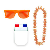Oranje accessoires feestpakket