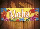 Aloha spandoek thema Hawaii