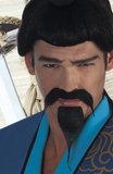 Set snor en baard samurai zelfklevend_