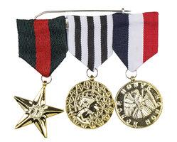 Medailles 3 stuks