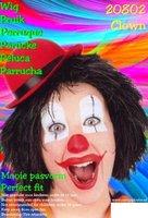 Clown touwtjes pruik zwart