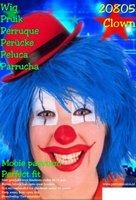 Clown touwtjes pruik licht blauw