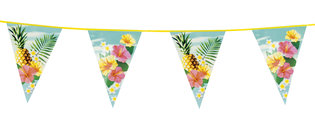 Hawaii vlaggenlijn Paradise 6 meter