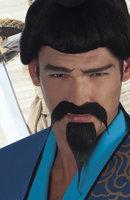 Set snor en baard samurai zelfklevend