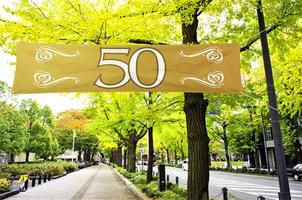 Straatbanner '50' 180 cm x 40 cm