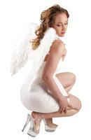 Engelen vleugels veren wit 50 x 50 cm