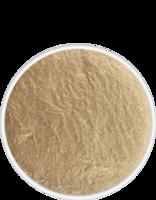 Kryolan Aquacolor schmink 4 ml goud Mgold (palet refill)
