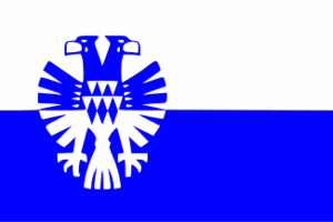 Vlag gemeente Arnhem 100 x 150 cm