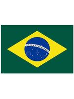 Tafelvlag moiree zijde 10 x 15 cm Brazilië