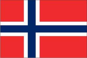Decoratievlag Noorwegen 90 x 150 cm
