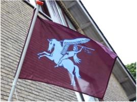 Airborne vlag 100 x 150 cm maroon rood