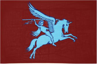 Airborne vlag