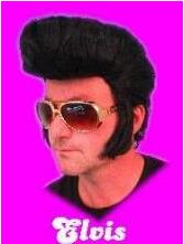 Elvis pruik zwart, vetkuif met bakkebaarden