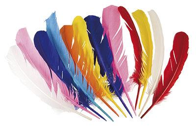 Indianenveren set a 12 stuks assorti kleuren