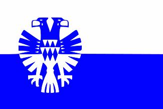 Vlag gemeente Arnhem 150 x 225 cm